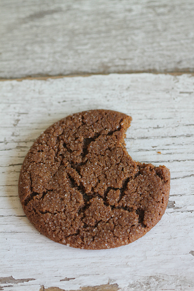 Bite out of a Molasses Cookie