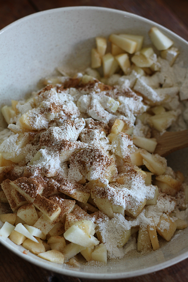 Diced apples, lemon juice, flour, cinnamon, and sugar. Mix ...