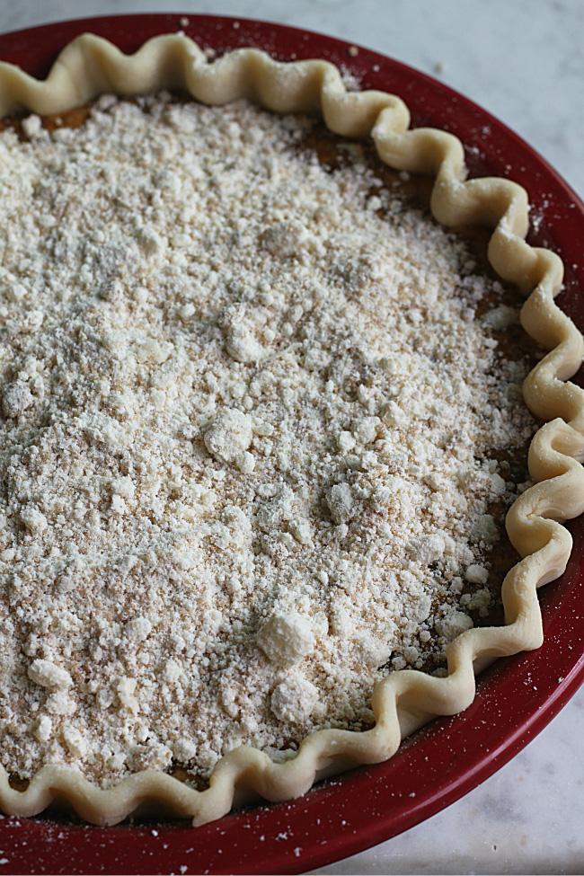 Crumbs on Pennsylvania Dutch Shoofly Pie