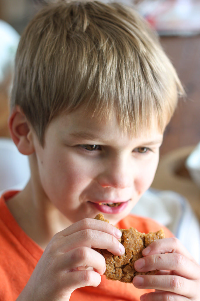 Boy Eating Sorghum Syrup Crinkle Cookies