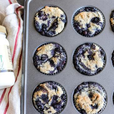 Vegan Wild Blueberry Muffins